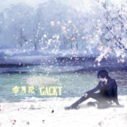 雪月花 (Setsugekka -The end of silence-)