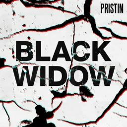Black Widow (Remix Ver.)
