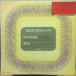 Serenade, Op. 25 - III. Allegro Molto