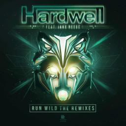 Run Wild (Alternative Extended Remix)