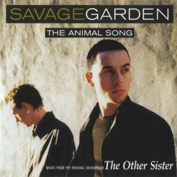 The Animal Song
