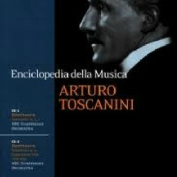 Concerto Per Violino Op.61 - Allegro Ma Non Troppo