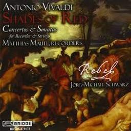Sinfonia In B-Minor Al Santo Sepolcro, RV 169: II. Allegro Ma Poco