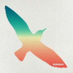Seagull's Dream