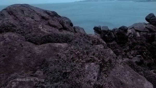 无心伤害 / Vô Tình Tổn Thương