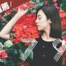 2799 Tình Yêu Dài Lâu / 2799 爱情久久