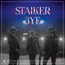 STALKER (Remix Version)