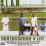 Slab Bitch (feat. Lil B The Grinda & M)