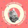 Say Meow Meow