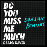 Do You Miss Me Much (Sunship Remix)