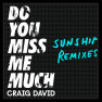 Do You Miss Me Much (Sunship Dub Mix)