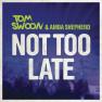 Not Too Late (Radio Edit)