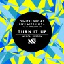 Turn It Up (feat. Wolfpack)