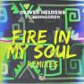 Fire In My Soul (Leandro Da Silva Remix)