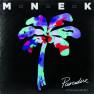 Paradise (Tunji Ige Remix)