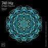 741 Hz Dissolve Toxins & Electromagnetic Radiations