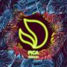 Pica (Laidback Luke Remix)