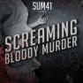 Screaming Bloody Murder (Album Version)