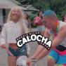 Calocha