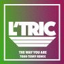 The Way You Are (Todd Terry Remix)