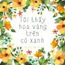 Tôi Thấy Hoa Vàng Trên Cỏ Xanh (Cover)
