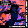 Light My Body Up (Tujamo Remix)