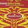 Synth & Strings Radio Edit