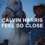 Feel So Close (Nero Remix)