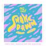 Shakedown (Remix)