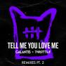 Tell Me You Love Me (Ari Remix)