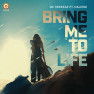 Bring Me To Life (Edit)