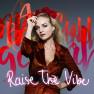 Raise The Vibe