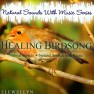 Healing Birdsong Natural Sounds with Music