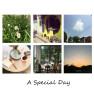 A Special Day (Guitar Ver.)