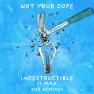 Indestructible (Proppa Remix)